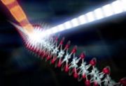 The injector shoots tiny protein crystals into the beam of X-ray pulses